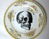 Vintage Skull Plate Handpainted porcelain plate Chase and Scout