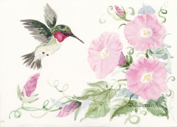 Hummingbird And Morning Glory Original Matted Watercolor