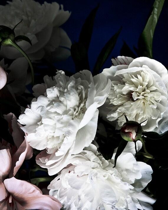 dark botanical_no_15