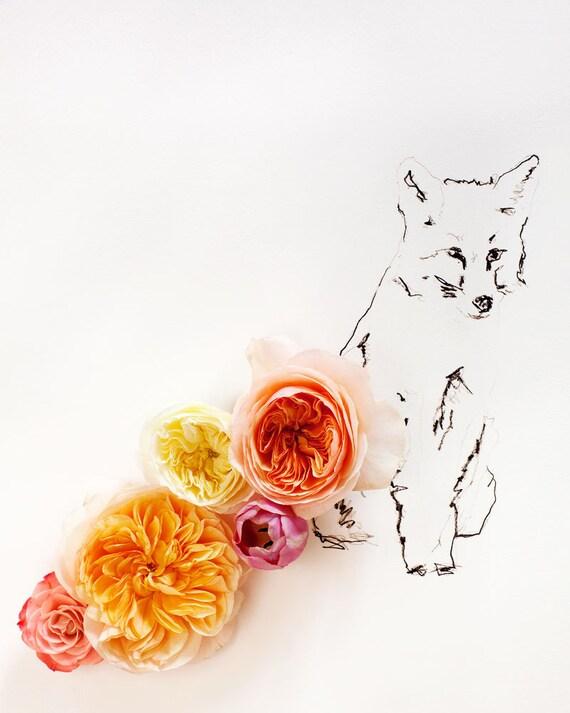 fox_no_3