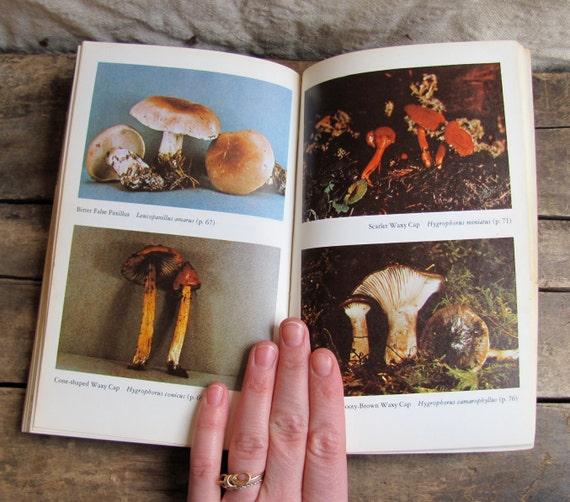 vintage 1970s book // The Savory WILD MUSHROOM
