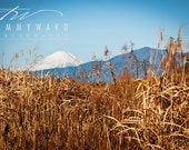 Mt. Fuji in Japan from NAF Atsugi Art print, 8x12