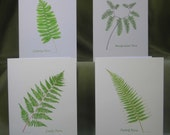 Woodland Fern Notecard Set with Envelopes