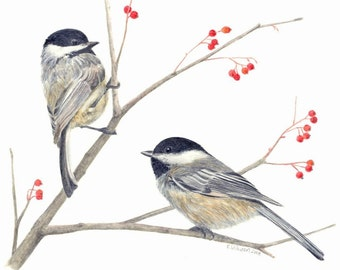 Pair of  Chickadees - Print