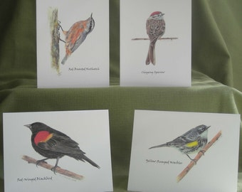 Woodland Birds Series II Notecard Set with Envelopes