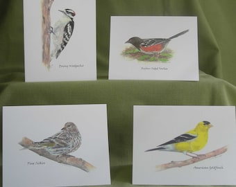 Woodland Birds Series I Notecard Set with Envelopes
