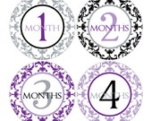12 Monthly Baby Milestone Waterproof Glossy Stickers - Just Born - Newborn - Weekly stickers available - Design M007-02