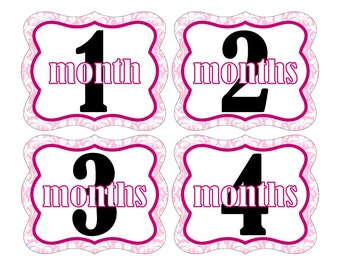 12 Monthly Baby Milestone Waterproof Glossy Stickers - Die Cut Shape - Just Born - Newborn - Weekly stickers available - Design M005-02