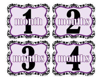 12 Monthly Baby Milestone Waterproof Glossy Stickers - Die Cut Shape - Just Born - Newborn - Weekly stickers available - Design M005-03