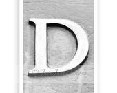 The Letter D - 4x6 Individual Alphabet Letter Photograph for Name Frames (unframed)