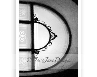 Letter D - Alphabet Photography Individual 4x6 Black and White Photo for Name Frames (D4)