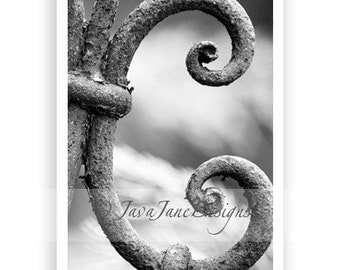 Letter C - Alphabet Photography Individual 4x6 Black and White Photo for Name Frames (C56)