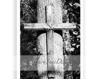 Letter T - Alphabet Photography Individual 4x6 Black and White Photo for Name Frames (T14)