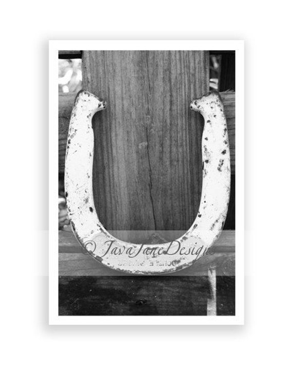 Letter U Alphabet Photography Individual 4x6 By