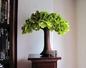 Ginkgo Biloba - Felt Tree