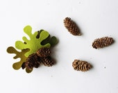Felt brooch - Fir branch with three pinecones. Winter accessorie for woman.