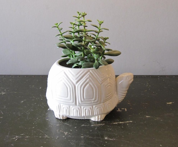White Geometric Turtle Planter Made In Japan By