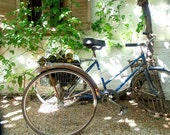 WINE MAKER'S BICYCLE fine art photo 8 by 10