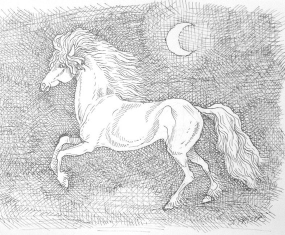 Horse And Moon Pen And Ink Drawing