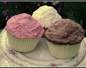 Neopolitan Faux Cupcake Trio