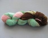 Lesley Hand-Dyed Superwash BFL Yarn
