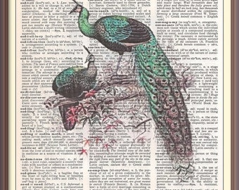 Peacocks on Branch-- Vintage Dictionary Art Print---Fits 8x10 Mat or Frame
