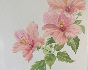 Hibiscus  - Original Painting