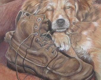 Had a Hard Day - Puppy Pencil Portrait