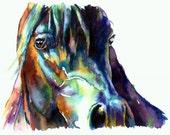 Bay Horse Portrait - Dark Brown Black -  giclee watercolor print