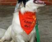 6 ADOPT ME Bandannas Mixed sizes for Rescue ADOPTION Groups