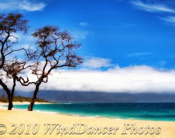 Tropical High Noon -  Fine Art Photograph of Beach - Hawaii - Seascape - Maui - Home Decor - Office Decor