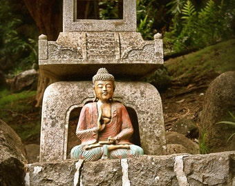 Buddha in the Forest -  8 x 10 Fine Art Photo - Home Decor - Buddha Photo - Asian - Stone Buddha - Zen