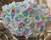 Forget Me Nots Flowers An Old Fashioned Favorite in Light Blue One Bouquet