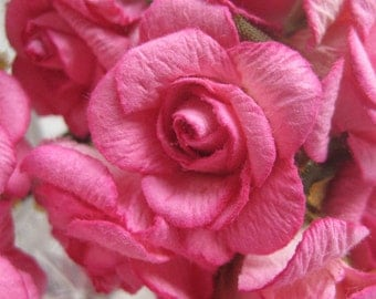 Paper Flowers 24 Large Millinery Old Fashioned Roses In Fuchsia