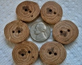 Wood or Wooden Buttons Lot of 6 Small Spalted Oak Tree Branch Buttons....1 inch....2 holes....82