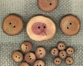 A Wonderful Assortement lot of 16 Tree Branch Wood Wooden Buttons....263