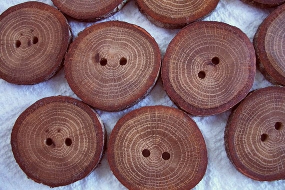 Lot of 10 XL Red Oak Handcrafted Tree Branch  Buttons....1 3/4 inch....2 holes....184