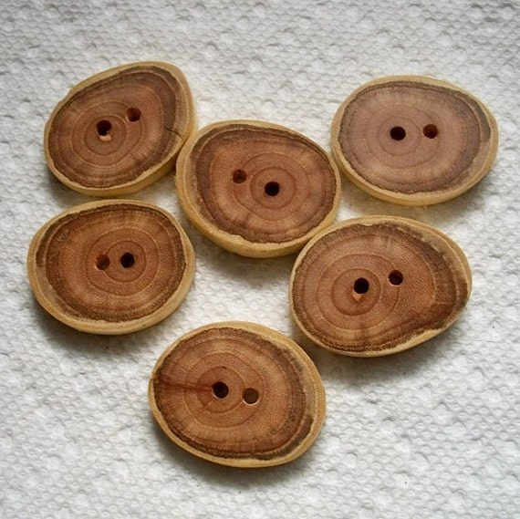 Lot of 6 Large wood or wooden North Carolina Mimosa Tree Branch Buttons.....1 3/8 inches....2 holes...133