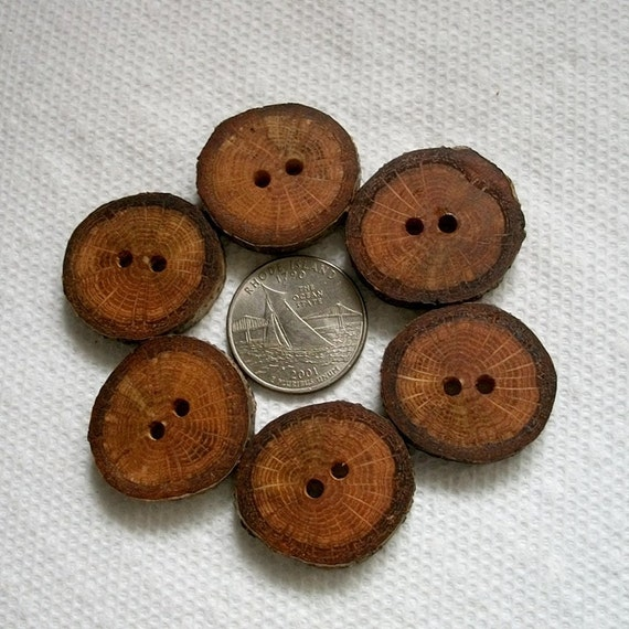 Wood or Wooden Buttons Lot of 6 Small Spalted Oak Tree Branch Buttons....1 1/8 inch....2 holes...08