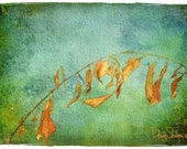 Wash Day  - (Watercolor Print - 12x8 - Dried Leaves - Clothesline - Fall Colors - Fine Art Print - Wall Decor)