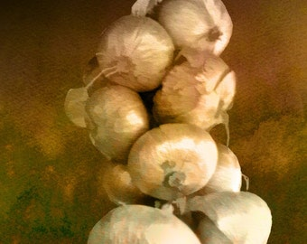 Italian Market   (Hanging Onions - Watercolor Print - 12x8 -  Amalfi Coast - Onions - European Market - Fine Art Print - Wall Art)