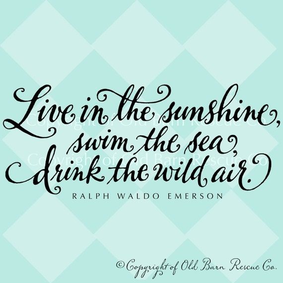 Live in the sunshine, swim the sea, drink the wild air - wall vinyl home decor lettering graphic calligraphy