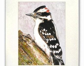 "Downy Woodpecker Watercolor Art 8x10"" Matted Art Print"
