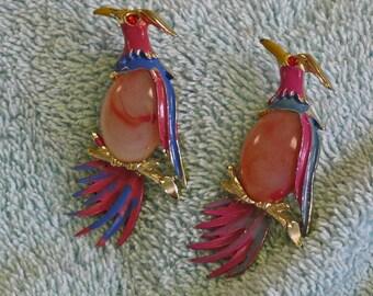 Pair of Parrot Brooch Pins - Cut Stones, Rhinestones, Metal - Vintage