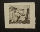 mare and foal drypoint etching --SALE--