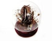 Vintage Preserved Butterfly Under Glass Dome Decorative Display / Terrarium