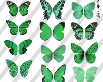 Digital Collage Sheet Green Butterfly Fairy Wings (Sheet no.W24) Instant Download