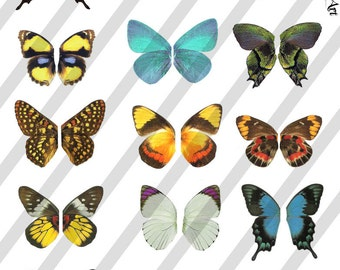 Digital Collage Sheet  Butterfly Fairy Wings  (Sheet no. W15) Instant Download