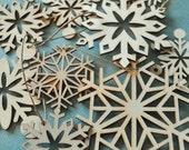 Bag of Snowflakes