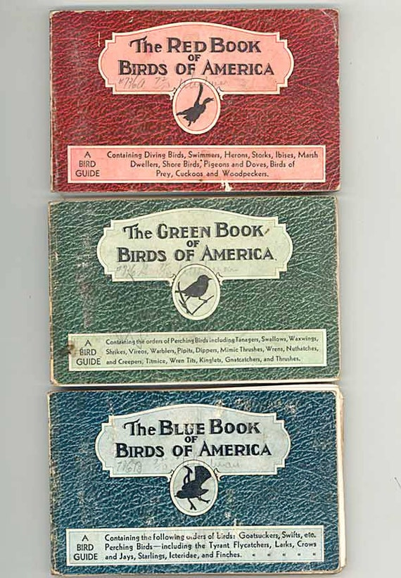 Set of 3 Vintage 1931 Birds of America Illustrated Bird Guides from Whitman Publishing